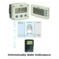 Intrinsically Safe Indicators